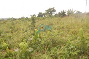 Plots of Land for sale at Araromi, Ota Ogun State