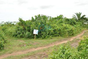 Plots of Land for Sale at Baba Ode, Ota, Ogun State