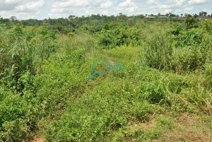 Lands for sale at Adefarasin in Ota, Ogun State 0