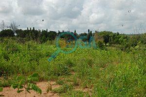 Lands for sale at Oke Mosan, near Abeokuta Golf Club, Ogun State 4