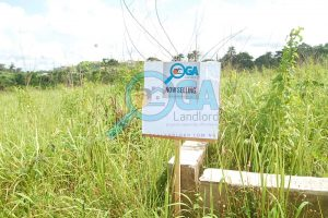 Lands for sale at Oke Mosan, near Abeokuta Golf Club, Ogun State1