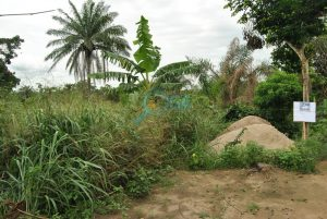 Plots of Land for Sale at Mosa (Phase 2), Ota Ogun State