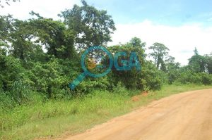 Acres of Land for Sale at Orimerunmu, Near Ibafo, Ogun State