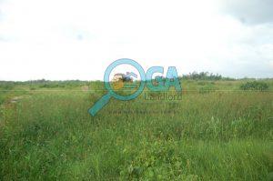 Plots of Land for Sale at Logic Palms Estate Near Novare Shoprite in Abijo, Ajah, Lagos State