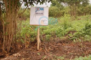 Plots of Land for Sale at Ogunwende, Ifo, Ogun State