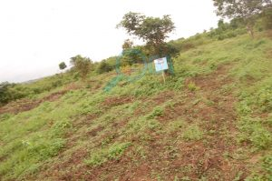 Plots of Land for Sale at Coker (Phase 2) Ifo, Ogun State