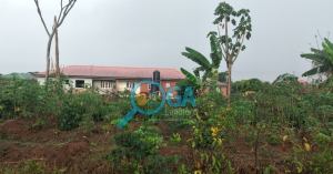 Plots of Land for Sale in an Estate at Ofada, Ogun State